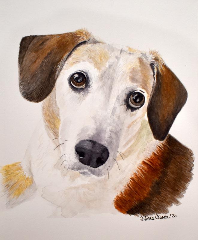 Dog_Portrait_Beagle_LR