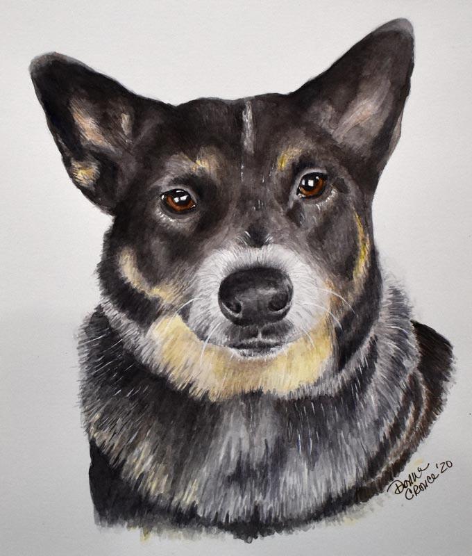 Dog_Portrait_Claire2_no_matt_LR