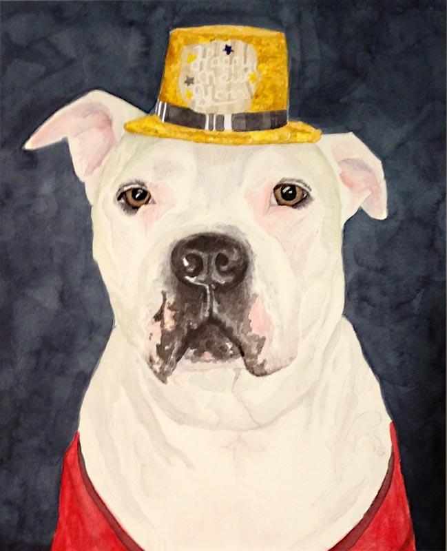 Dog_Portrait_Pit_with_hat_LR